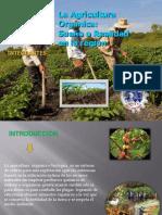 Recursos Industriales-Agricultura Orgánica