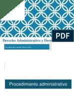 Derecho administrativo, contencioso administrativo y CAS