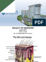 L11 Skin and fasciae