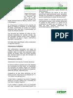 Contenções e Escoramentos - Cimbramento de Grandes Estruturas.pdf