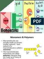 6.Biomolecules