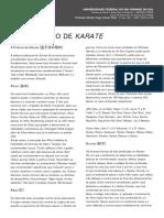 Modulo03_aula02_8kyu_TREINAMENTODEKARATE.pdf
