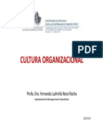 AULA - CULTURA ORGANIZACIONAL 2017