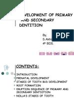 developmentofprimaryandsecondarydentition