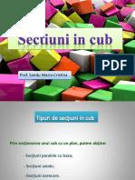 ppt_sectiuni_animate_in_cub