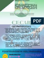 CORPORACION UNIVERSITARIA DEL CARIBE CECAR (3)