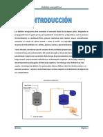 BEBIDAS ENERGIZANTES (subido).docx
