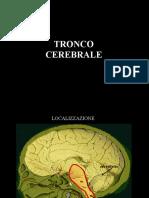 tronco cerebrale