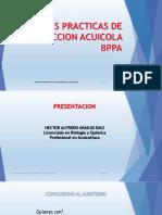 BPPA BERASTEGUI Y BARRO PRIETO (2)
