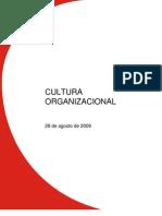 Informe Tema Cultura Organizacional