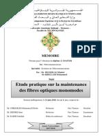 Ms.Tel.Beldjilali+Khelladi.pdf