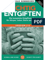 Richtig Entgiften 2.0.pdf