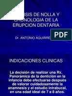 ANALISIS DE NOLLA Y CRONOLOGIA DE LA ERUPCION
