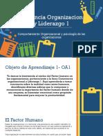 Conciencia Organizacional y Liderazgo 1