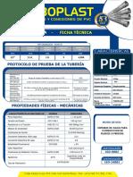 Ficha Técnica - Agua Clase 10.pdf