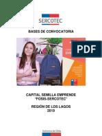 Bases-Semilla_Los-Lagos-Fosis-Sercotec_VF.pdf