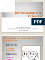 3.- intro_oclusion_y_PMB_-_DV