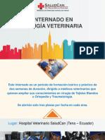 Internado-en-Tejidos-Blandos-HVSC