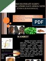 Aromaterapi Sampo