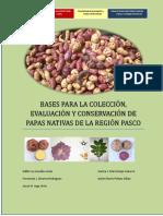 LIBRO PAPAS NATIVAS 2018-2019  Karina docx.docx