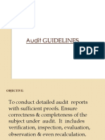 Audit-Guidelines