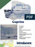 Arctica.pptx