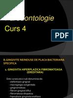 CURS 4