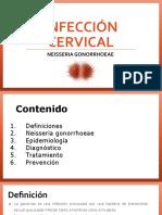 Infección Cervical.pdf