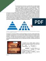 ANALISIS DE LA CONTIGENCIA NACIONAL CHILENA SEGUN LA DIRECCION DE PERSONAS