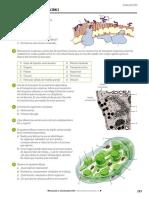 BG2B CONTROLB 09 La Membrana Plasmatica Organulos Membranosos