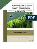 FINAL FINALPERFIL FORESTACIÓN MICROCUENCA RIO GRANDE HUAMACHUCO