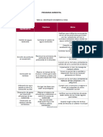 5.PROGRAMA AMBIENTAL.pdf