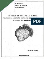 Severeyn H. 1988. El ciclo de vida de la almeja Polymesoda arctata, en el Lago de Maracaibo