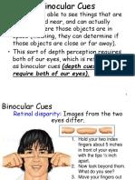 perception 2 - binocular and monocular cues