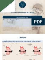 Anatomia e fisiologia da laringe.pptx