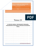 _Tema 23T - Proceso Laboral.pdf