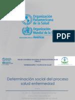 Determinantes OPS.pdf