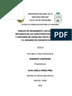 TESIS PARA LIBRO ROSA A. PEREZ PEÑA