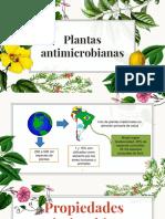 botanica plantas antimicrobianas.pptx