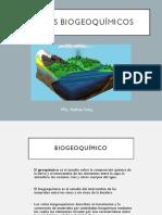 Ciclos Biogeoquimicos.pptx