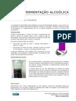 05_Ferm_Alcoolica_Monitoramento