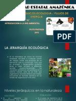UNIVERSIDAD ESTATAL AMAZÓNICA flujo