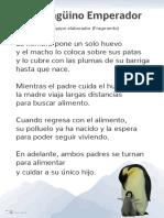 17-20-El-pinguino-Emperador