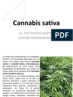 Cannabis sativa. ( II)