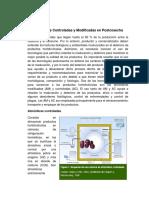 Atmósferas Controladas y Modificadas en Postcosecha.docx