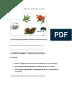 avaliação plantas