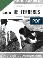 Terneros
