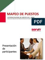 PPT Mapeo de Puestos 2015