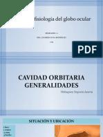Generaidades de ojo.pptx