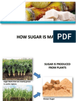 How-Sugar-is-Made-ver-3